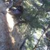 Природа Туапсе 7