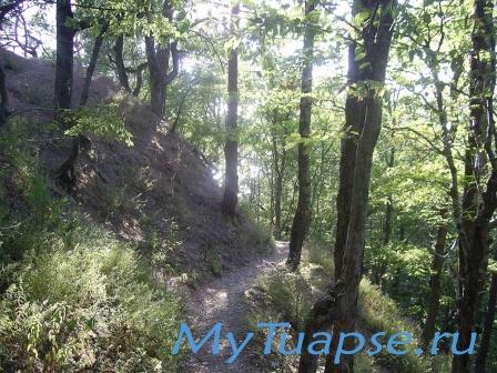 Природа Туапсе 9