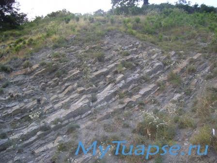 Природа Туапсе 1