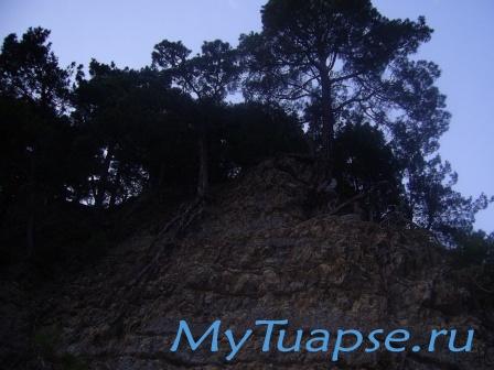 Природа Туапсе 4
